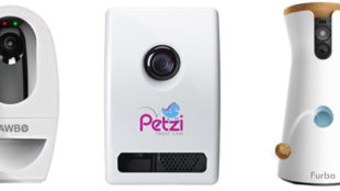pet treat camera
