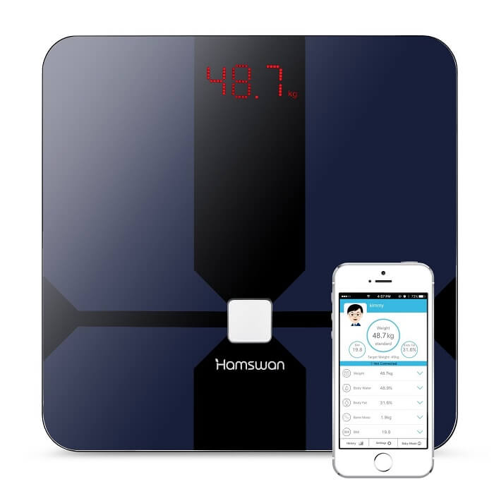 hamswan smart bathroom scale